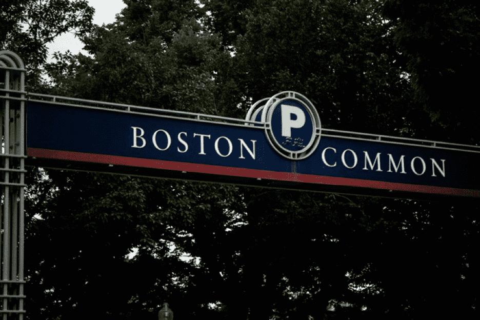 boson common